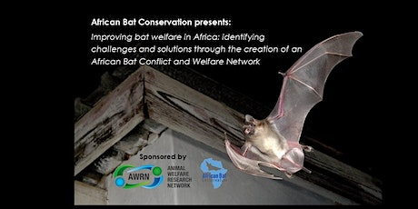 Improving bat welfare in Africa: identifying challenges and solutions tickets