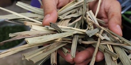 Fiber Club: Elephant grass, fast & strong fibers tickets