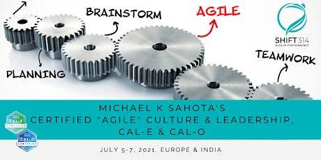 """ONLINE Live Sahota """"Agile"""" Culture & Leadership (CAL-E and CAL-O): EU tickets"""