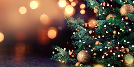 Edinburgh Zoo's Christmas Nights - VIP Package tickets
