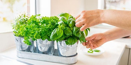 Intro to Square Foot Gardening tickets