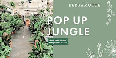 Bergamotte+Pop+Up+Jungle+--+Malm%C3%B6
