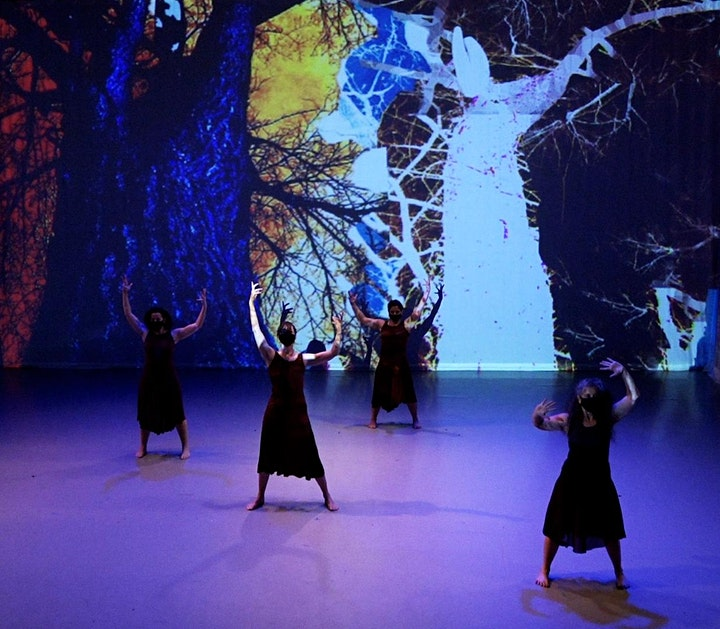 Mulier Dierum: Chronicles of Woman - Live at Caponi Art Park image