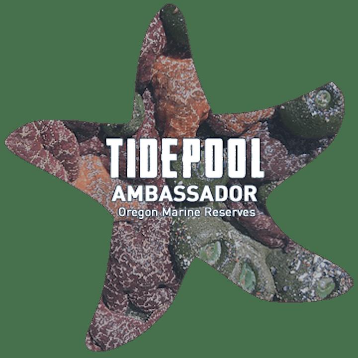 Tidepool Ambassador Tour-Cape Perpetua Marine Garden image