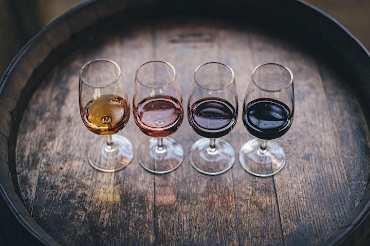 Co-op Fortnight Fairtrade Wine Tasting - Read Between the Wines image