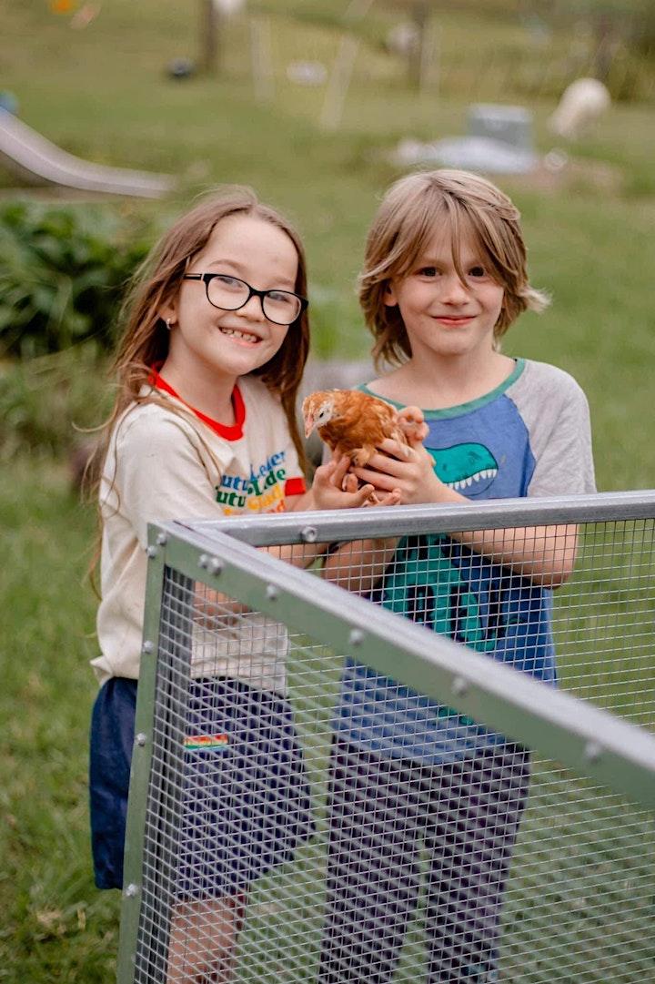 Harvest Festival - Family Farm Animal Experience - Saturday June 12th, 2021 image