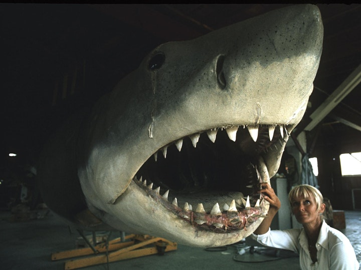 Valerie Taylor: Playing With Sharks (PG) image