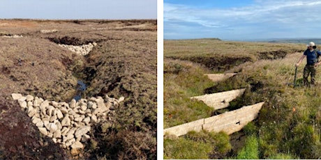 Natural flood risk management in the UK: the scientific evidence base tickets