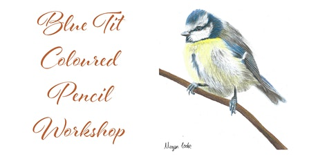 Beginners Blue Tit Coloured Pencil Workshop tickets