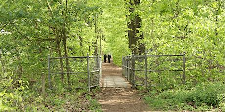 Inspiratie wandeling : Ontwikkel samenwerking & agility in jouw organisatie billets