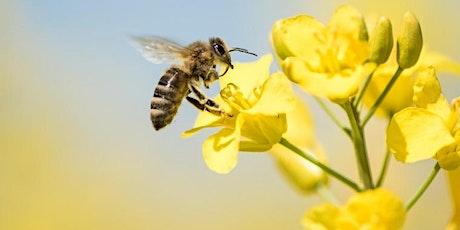IPM: Pests, Predators and Pollinators tickets