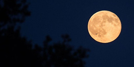 Full Moon Meditation Circle  - June tickets