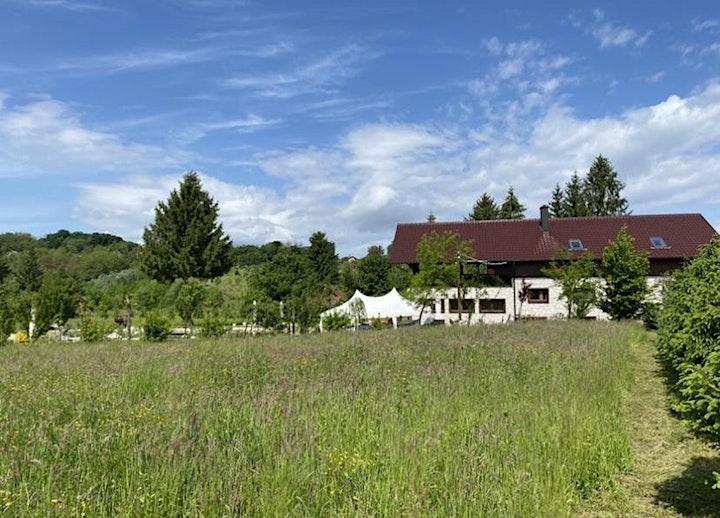 Kräuterworkshop - Naturkosmetik & Yogaauszeit: Bild