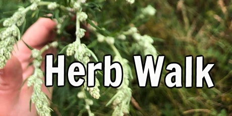 The Herbs of Millennium Green tickets
