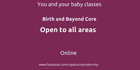 Birth and Beyond Core Online  all areas for parents due November/December tickets