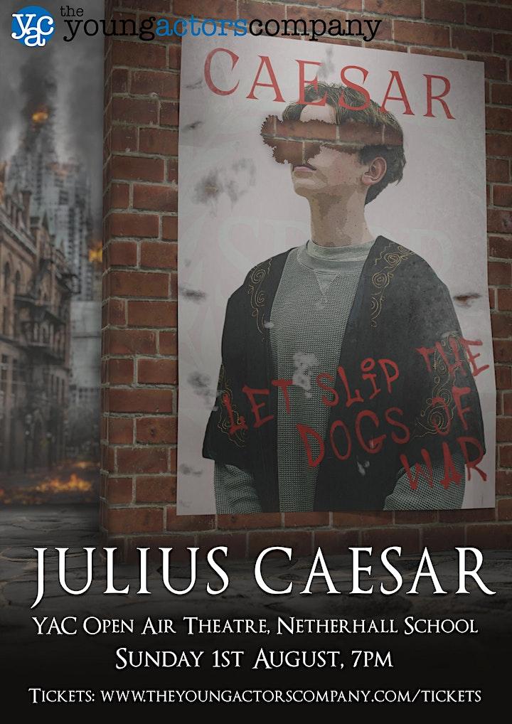 Julius Caesar image