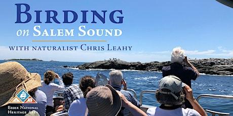 Birding on Salem Sound with Chris Leahy tickets