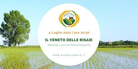 Il Veneto delle risaie | Meeting a cura del prof. Danilo Gasparini tickets