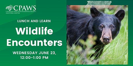 Wildlife Encounters: How to Safely Share Nature tickets