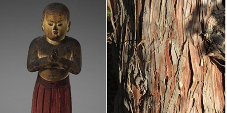 Botany of a Buddhist Sculpture: Prince Shotoku at Age Two  & Hinoki Cypress tickets