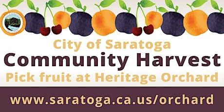 Saratoga Community Harvest tickets