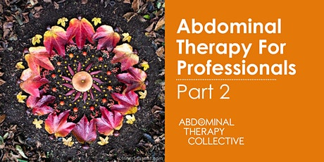 Abdominal Therapy for Professionals: Part 2 tickets