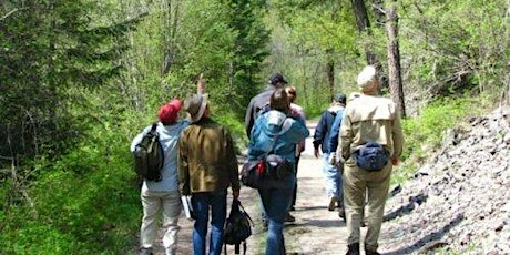 Saunter With a Naturalist in the Evening - July 13 tickets