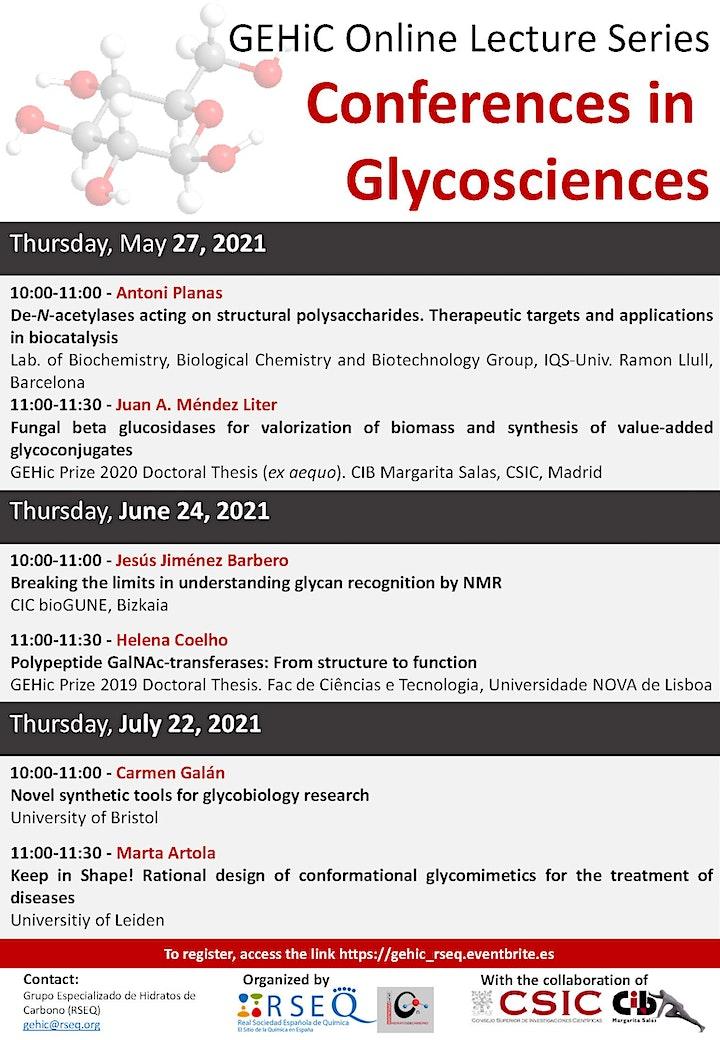 Imagen de Conferencias en Glicociencias - Sesión IV