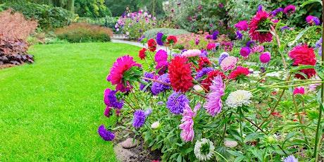 June is Seniors' Month  - Best of British Gardens with David Hobson tickets