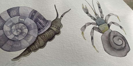 Things that live in shells - A Zentangle® inspired watercolor  class tickets