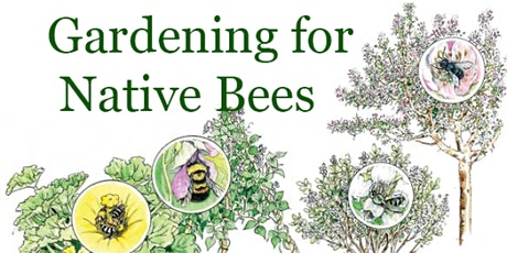Gardening for Native Bees tickets