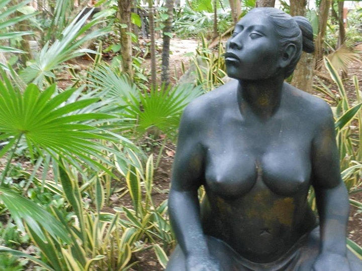 Transgender Women's Retreat  in Paradise with  Dr. Erica Anderson image