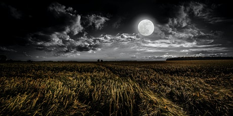 Full Moon Inter-dimensional Past Life Journey tickets
