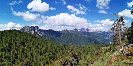 Escursione Naturalistica: Monte Sesilis e Bosco Colmaier biglietti