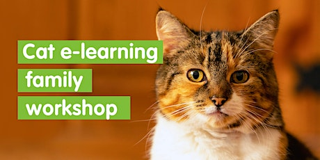Cat e learning family workshop - Self led tickets