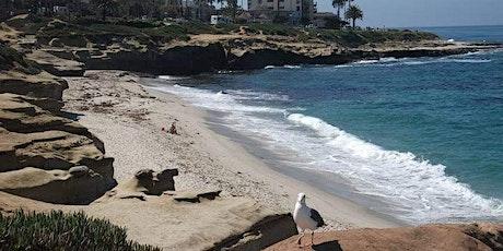 La Jolla Coastal & Village Morning Walkabout tickets