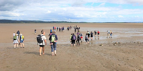 Morecambe Bay's Tidal Islands - Guided walk to Chapel Island tickets