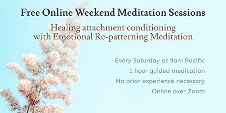 Guided Meditation: Working with attachment and schemas tickets