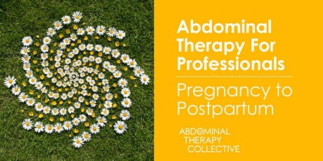 Abdominal Therapy for Professionals: Pregnancy to Postpartum tickets