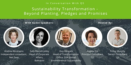 Sustainability Transformation - Beyond planting, pledges and promises tickets