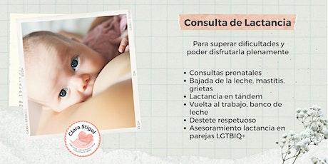 Consulta de lactancia entradas