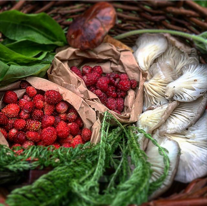 Midsummer Forage and Fire image