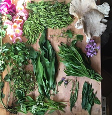 Midsummer Forage and Fire tickets