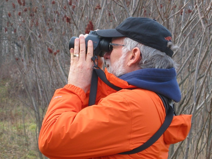 Tweets to Trees: Bird Watching in the Trees image
