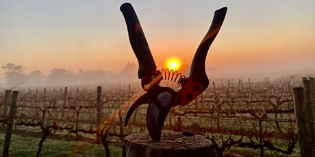 Pruning for the Future presented by Heathcote Winegrowers Association tickets