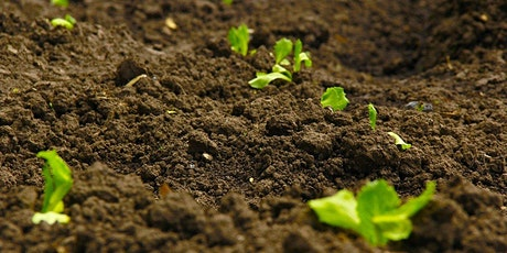 Getting the best from your soil tickets