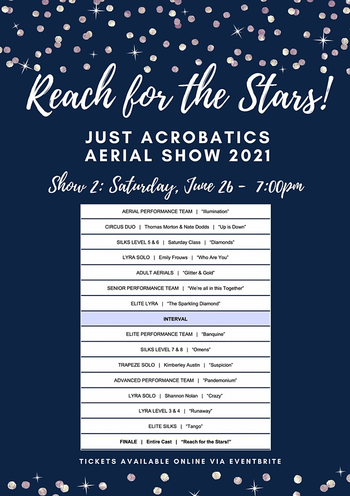 'Reach For The Stars' Aerial Show image