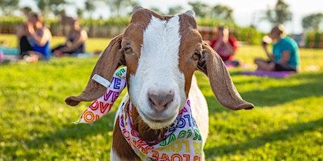 Kid's Goat Yoga @ Tolino Winery tickets