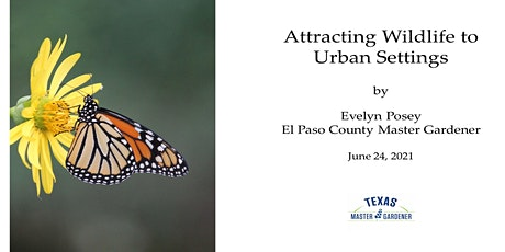 Attracting Wildlife to Urban Setting tickets