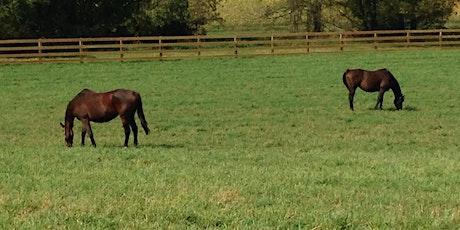 Equine Pasture Field Day- CMREC tickets
